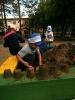 Живая природа в детском саду_5